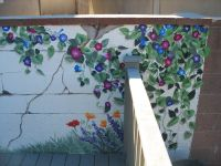 Outdoor Wall Murals | Residential and Commercial Murals ...