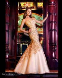 Quinceanera dresses in Miami for rent Quince Dress Stores