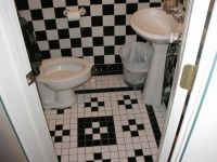 Appealing Black And White Bathrooms Hairy Black And White ...