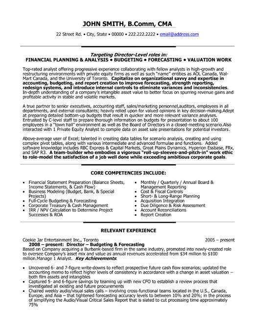 director of finance resume examples - Template