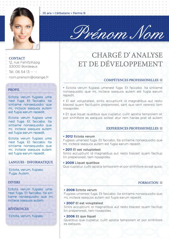 exemple cv consultant moa