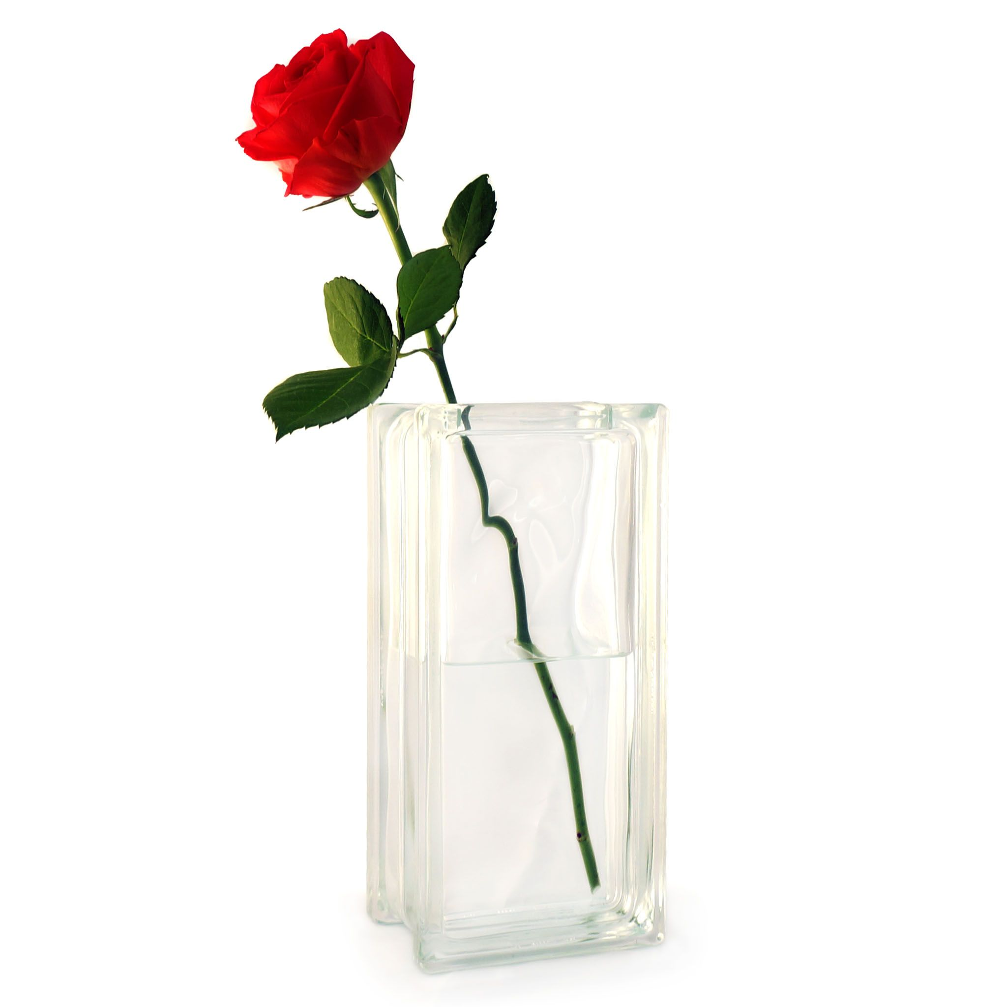 Rosen In Vase Single Red Rose In A Glass Block Vase Lovely Romantic