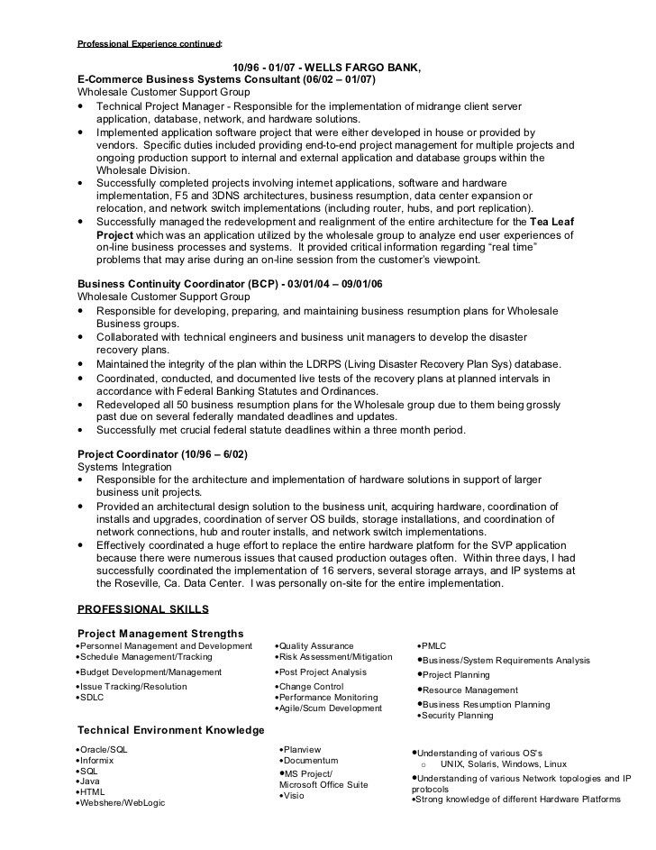 project manager resume skills 166 best resume templates and cv