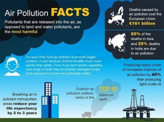 Image result for AIR POLLUTION INFOGRAPHICS