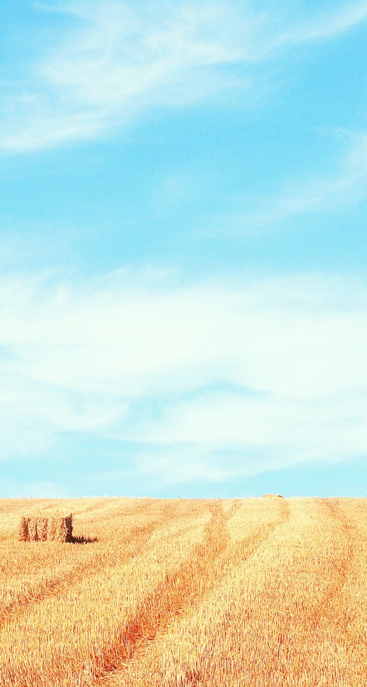 Iphone Plus Wallpaper Iphone 5 5s 5c Parallax Wallpaper Winding Road