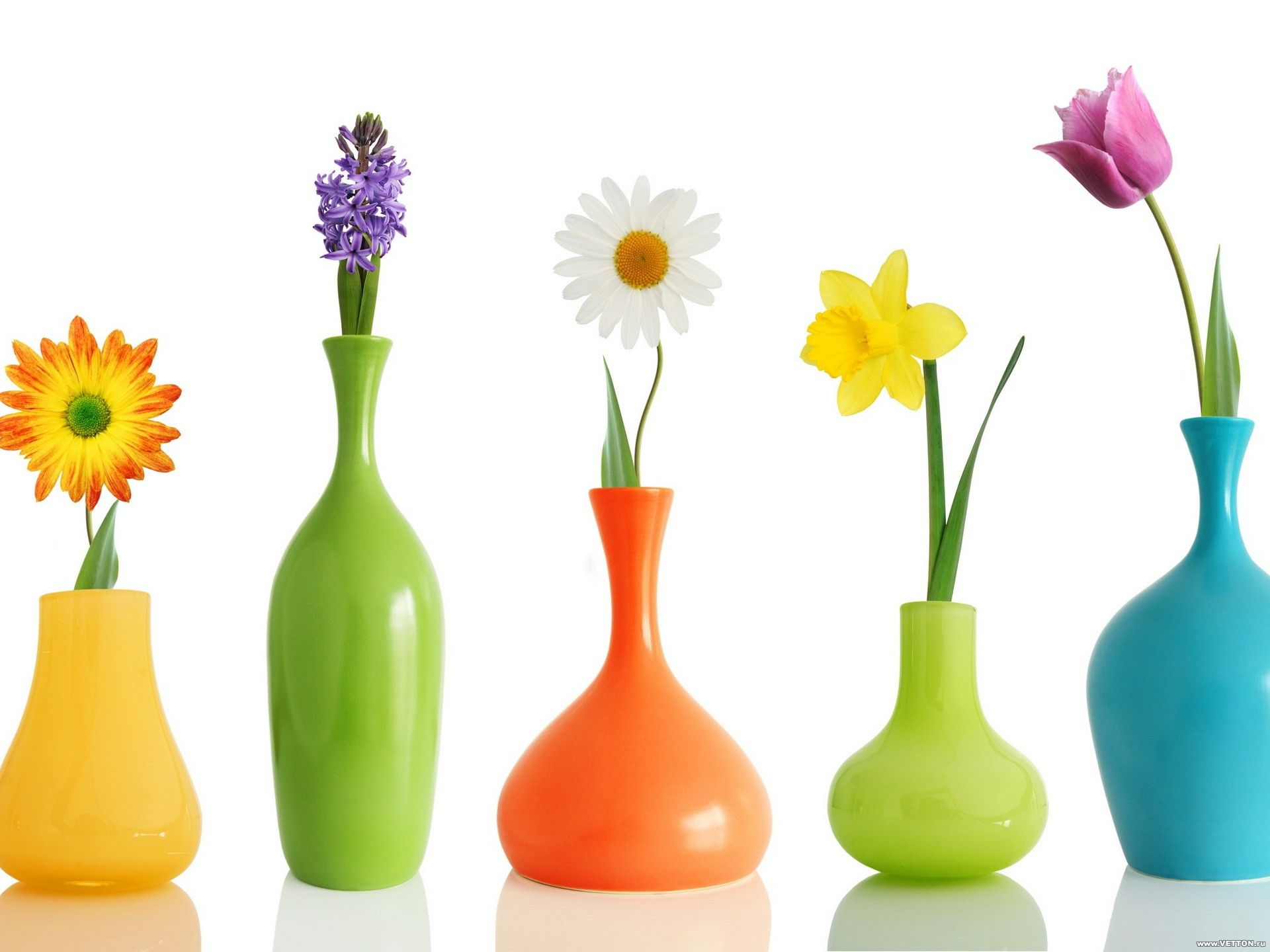 Beautiful Flower Vases Beautiful 3d Colorful Jars With Flowers Wallpaper