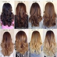 Ombr haircolor chart by levels | Ombr hair colors ...