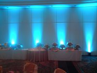 Uplighting Rental Atlanta on Pinterest | Led, Floral Arch ...