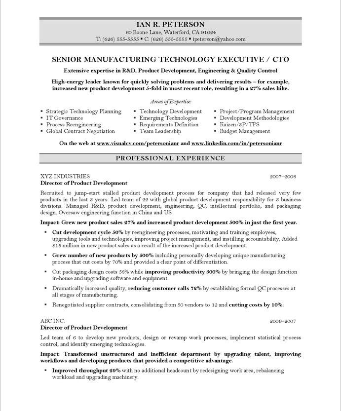 Chief Technology Officer-Page1 Executive Resume Samples - cto resume examples