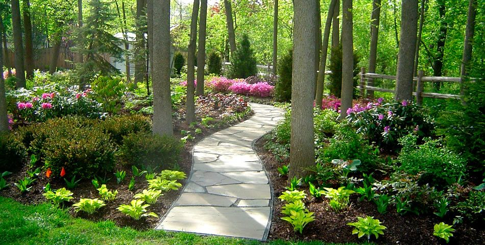 1000+ Images About Landscape On Pinterest | Gardens, Shade Plants