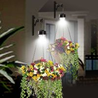 hanging solar lights outdoor | Hanging baskets | Pinterest ...
