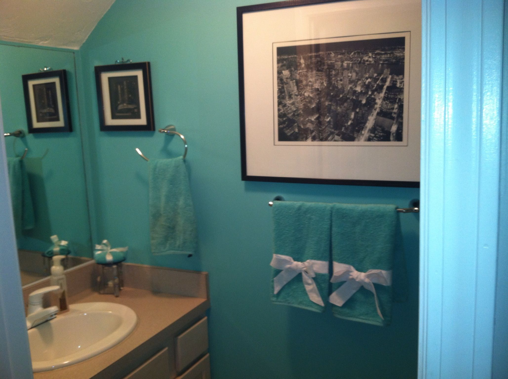 Themed Bathrooms Ideas Cute Decor Towel Idea For Tiffany Themed Bathroom For
