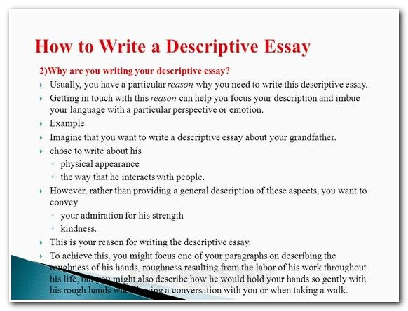 essay writing disclaimer Free coursework on confidentiality from essayukcom, the uk essays company for essay, dissertation and coursework writing.