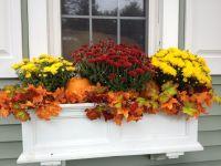 Fall window box. | Fall | Pinterest | Window, Box and Gardens