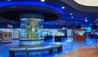 Cool aquarium pet store interior design | Places & Spaces ...