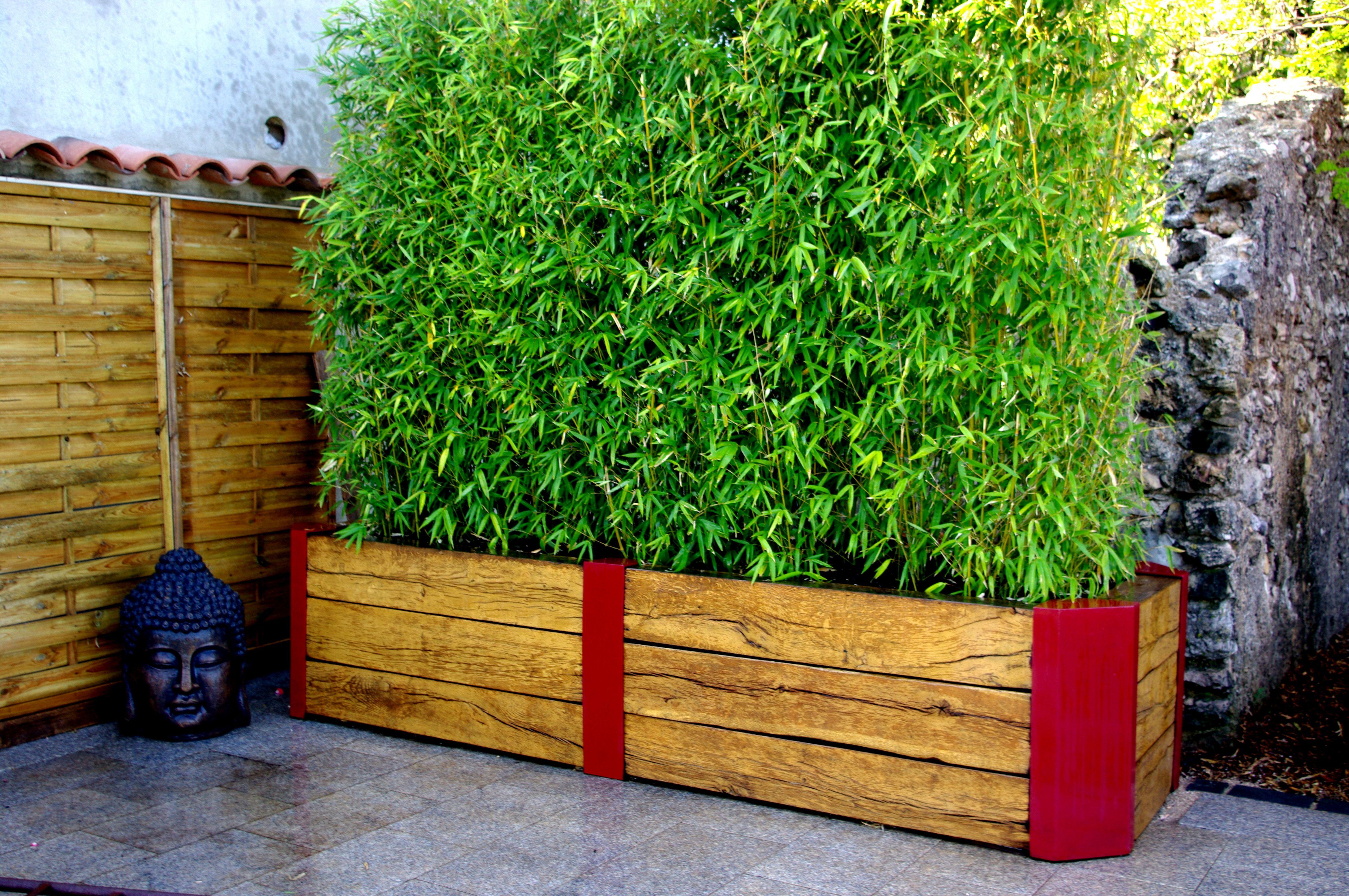 Bambou en pot pour terrasse - Bambou en bacs terrasse ...