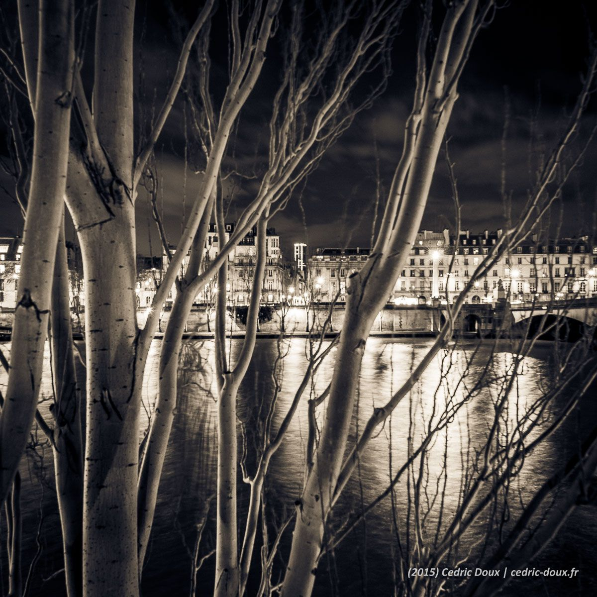Pinterest Photos Noir Et Blanc Quais De Seine à Paris La Nuit Photo Noir Et Blanc
