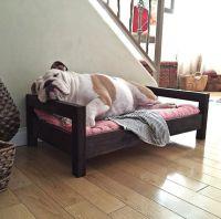 Medium Dog Bed - Raised Dog Bed - Elevated Dog Bed ...