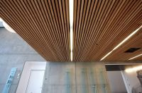 Stunning Slatted Wood Ceiling Panels Design For ...