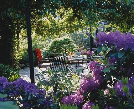 Gartengestaltung - Ideen und Planung Garten, Gardens and Flora - gartengestaltung tipps
