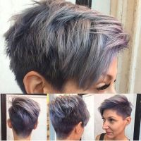 Pravana Hair Color Silver | www.imgkid.com - The Image Kid ...