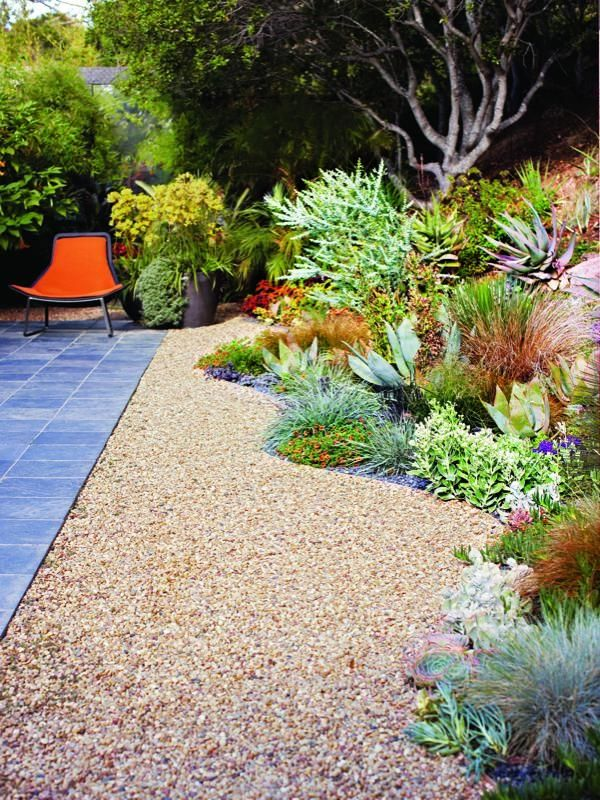 A gorgeous California no-lawn garden -- love that curvy border of - drought tolerant garden designs
