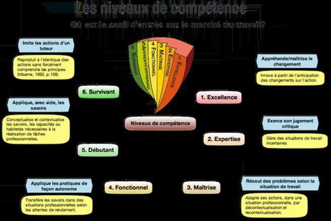 niveaux competence cv