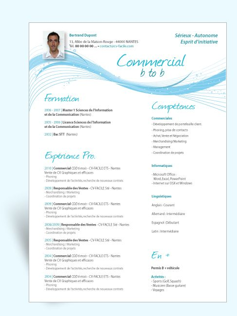 cv original libre office