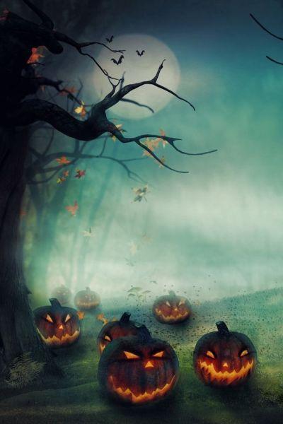 Jack o lanterns Halloween theme iPhone wallpaper background haunting   backgrounds   Pinterest ...