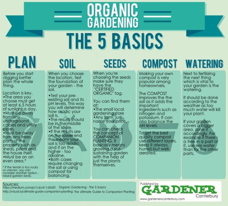1000+ Images About Gardening & Hydro Infographics On Pinterest
