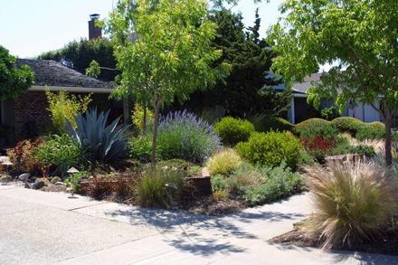 Sustainable, Low Water Garden Design in San Jose, California - sustainable garden design