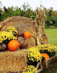 fall outdoor decorations with hay - 28 images - decorating ...