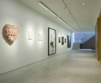 art gallery lighting - Google Search | project: manulele ...
