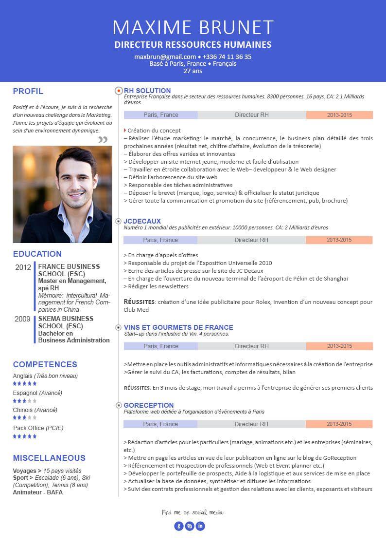 cv professionnel page