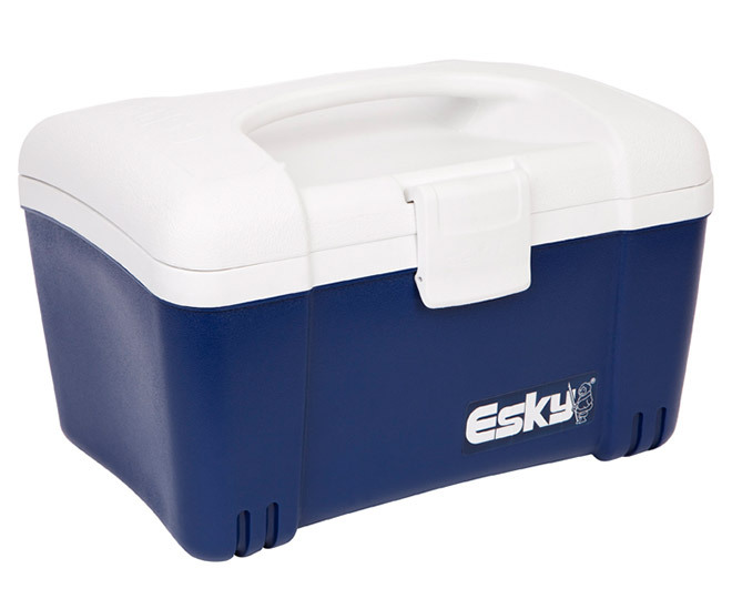 Esky 6l Ice King Lunch Box Cooler Catchcomau