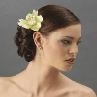 Double Mint Green Orchid Bridal Troptical Wedding Flower ...