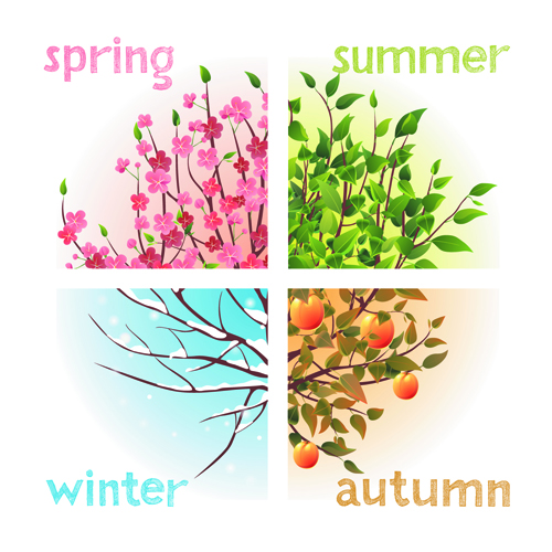 Tree with four seasons vector 02 free Free download