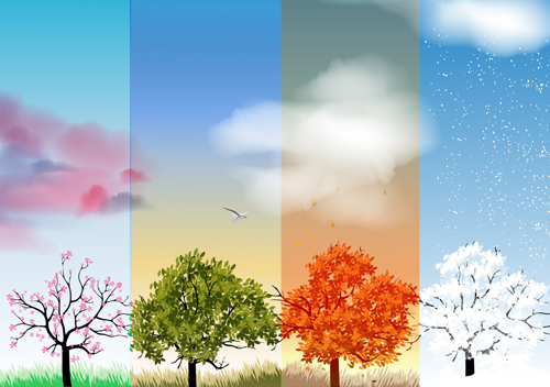 Tree with four seasons vector 04 free for Free Download Free Vector