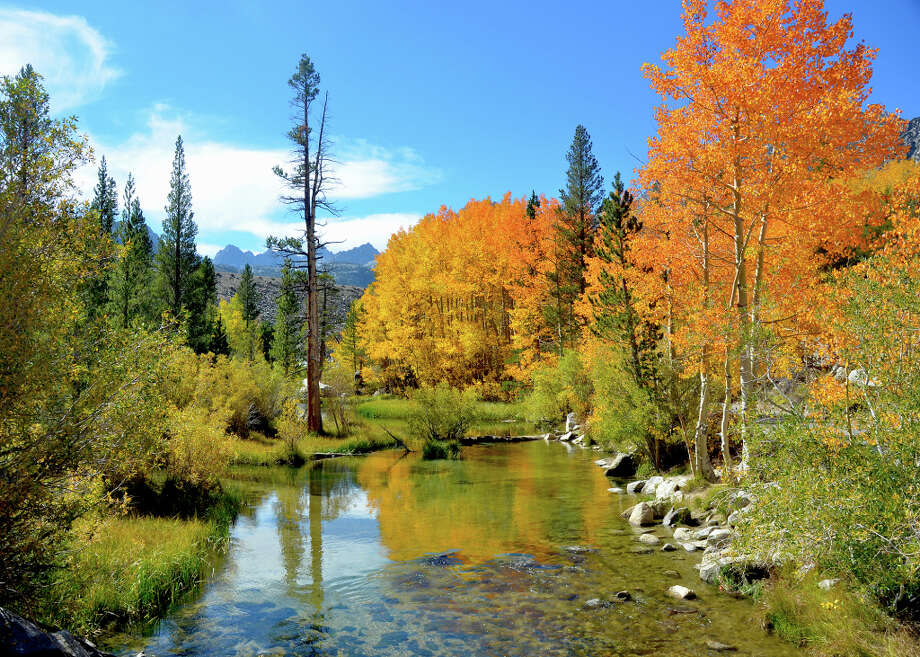 Snow Village 3d Live Wallpaper And Screensaver Best Bets For Fall Foliage In The Bay Area And Northern