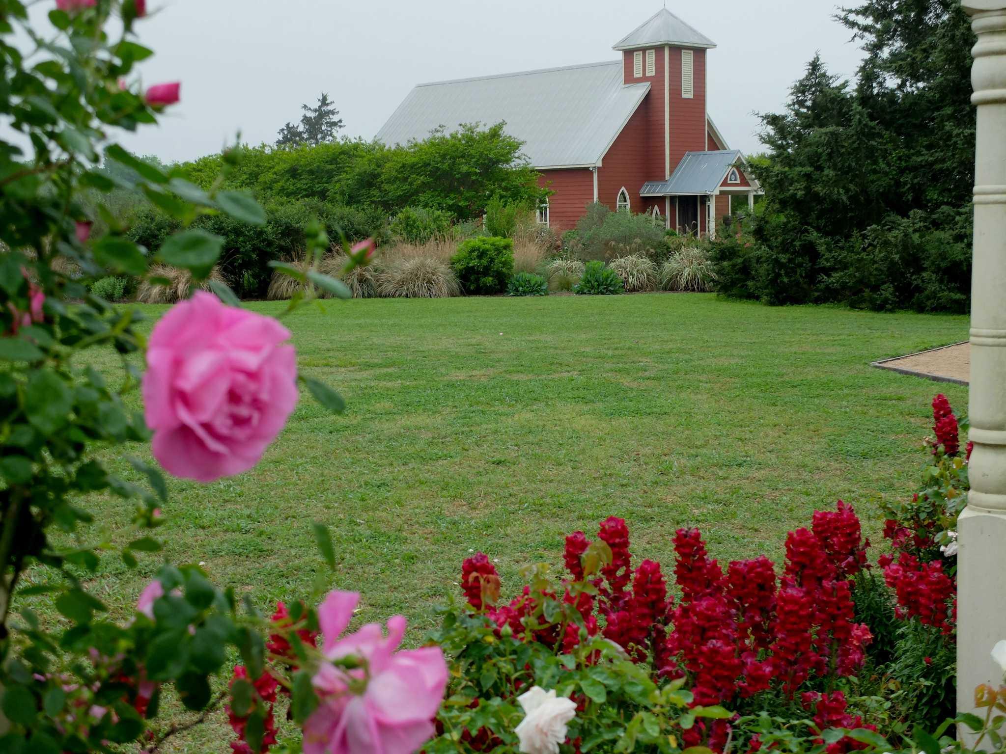 Fullsize Of Antique Rose Emporium