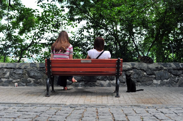 Two women and cat