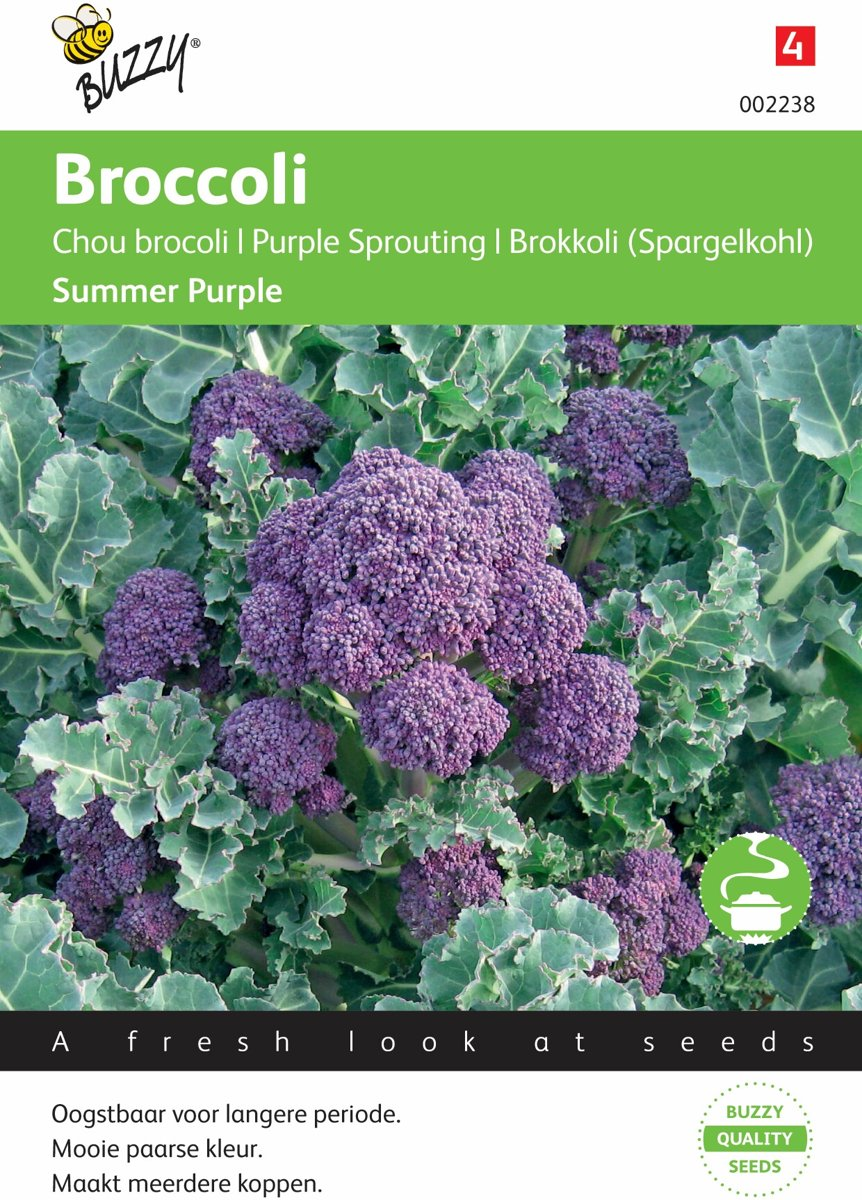 Broccoli Paars Buzzy Broccoli Summer Purple