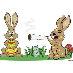 Regaling Can Rabbits Eat Banana Tree Leaves Can Rabbits Eat Banana Leaf From Stoned Bunnies To Pet Effect Pot On From Stoned Bunnies To Pet Effect