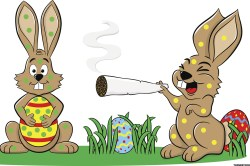 Small Of Can Rabbits Eat Bananas