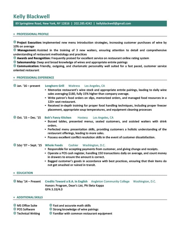 english cv template monster