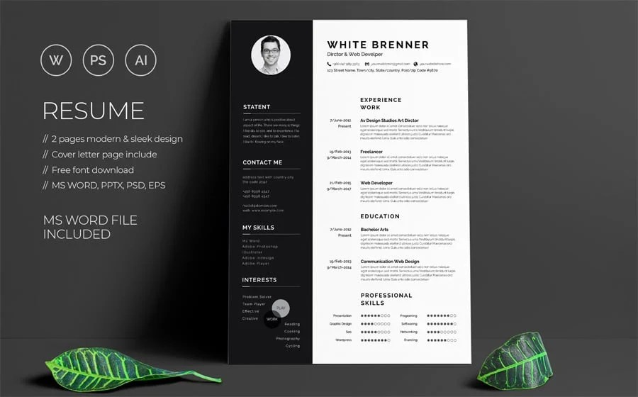 free modern cv template download word