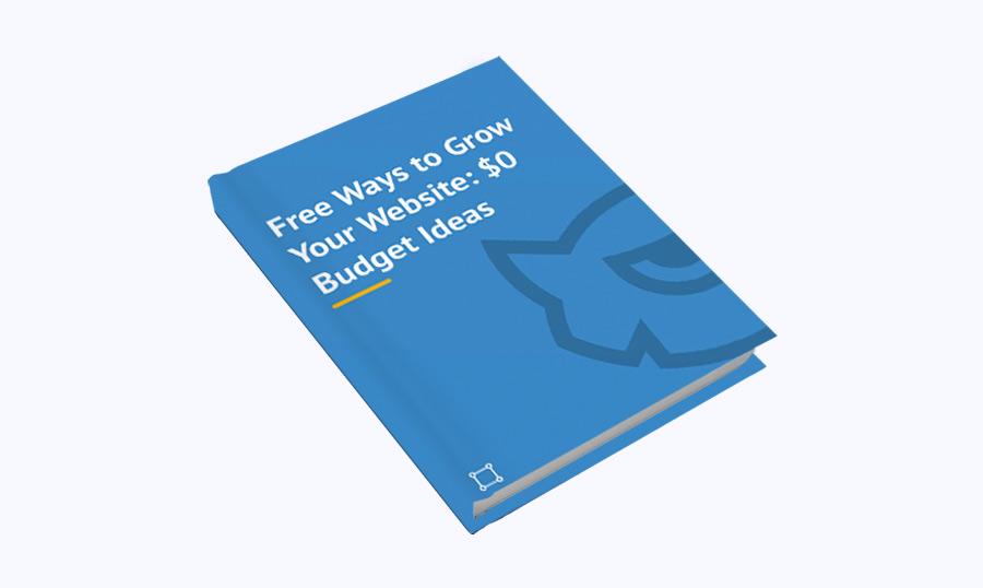 Free Ways to Grow Your Website $0 Budget Ideas Free eBook