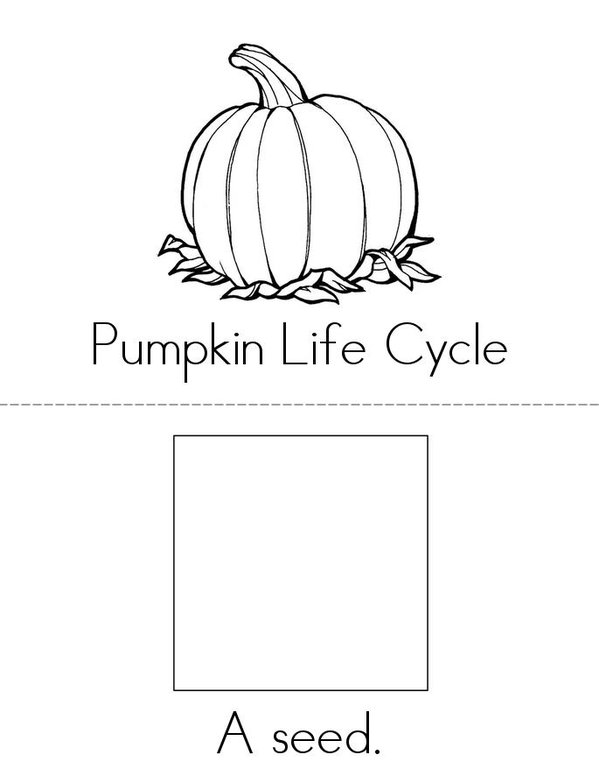 Pumpkin Life Cycle Book - Twisty Noodle