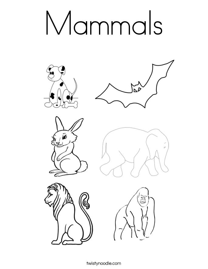 Mammal Coloring Pages - Eskayalitim