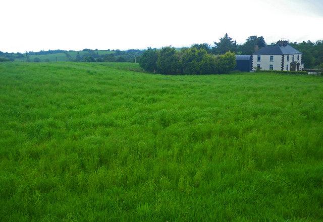 3d Perspective Wallpaper Irish Country Home Beside High Grass 169 C Michael Hogan